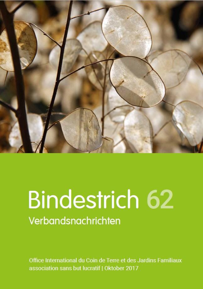Office International - Bindestrich 62