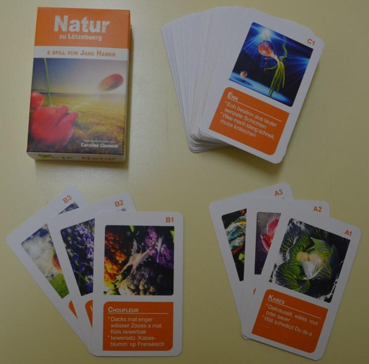 CTF Spielkarten