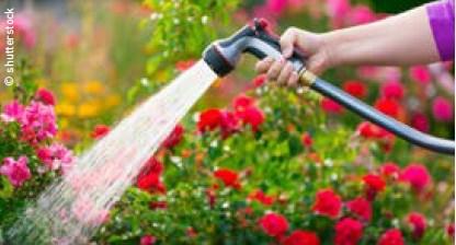 Den sommerlichen Garten richtig gießen
