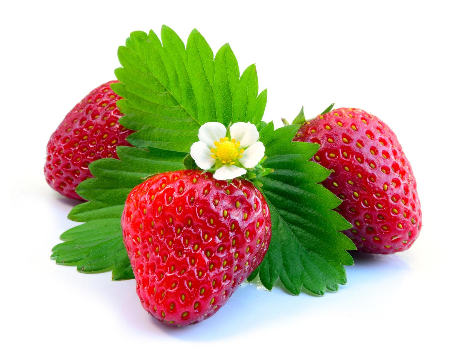 Steckbrief Erdbeere