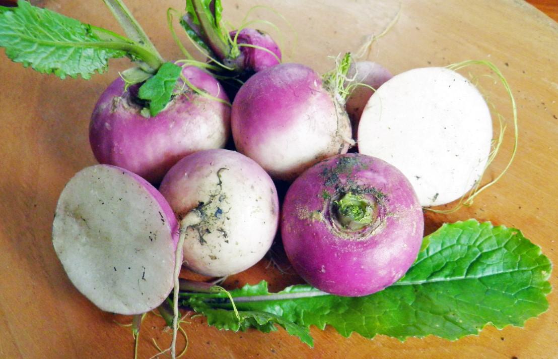 Einfache Kultur, schnelle Ernte